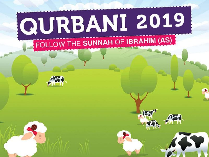 Qurbani Udhiya 2019