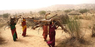 The continuous Tharparkar Crisis