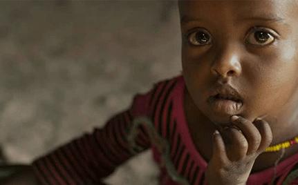 Africa Food Parcels
